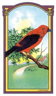 VintageFeedsacks: Birds and Nests