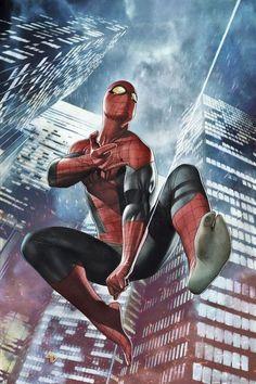Superior Spider-Man Variant - Adi Granov
