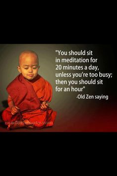You should it in meditation for 20 minutes a day, unless you're too busy; then you should sit for an hour. — Old Zen saying