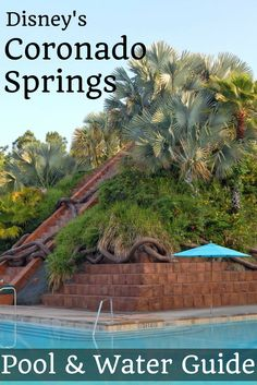 Walt Disney World's Coronado Springs Resort Water Features and Pools: A Complete guide to all the water fun at Disney's Coronado Springs.