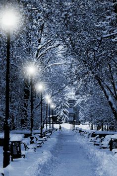 Romantic Winter