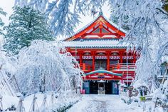 A temple in snowy Japan : pics