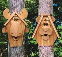 Free Bird House Patterns and Designs - Saferbrowser Yahoo Image Search Results