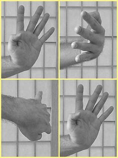 Image result for wing chun hand forms