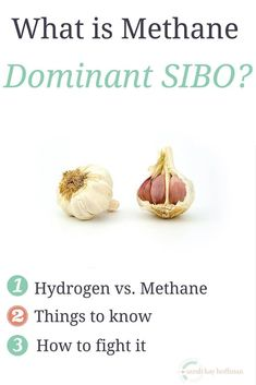 What is Methane Dominant SIBO   A Gutsy Girl #natural #naturalremedies #remedies Sibo Symptoms, Fodmap Diet, Low Fodmap, Fodmap Foods, Low Carb, Cacciatore Recipes, Small Intestine Bacterial Overgrowth, Gaps Diet, Scd Diet