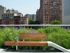Most Beautiful and Unique Benches in New York City