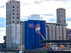 Blue-Six-Pack ~ Buffalo, NY