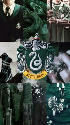 Slytherin is my family Hery Potter, Theme Harry Potter, Slytherin Harry Potter, Harry Potter Tumblr, Harry Potter Pictures, Harry Potter Characters, Harry Potter World, Harry Potter Memes, Slytherin Pride