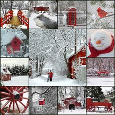 Red and Snow | Flickr - Photo Sharing!