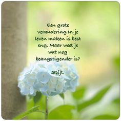 Een grote verandering in je leven maken is best eng,. Maar weet je wat nog beangstigender is? SPIJT #regret #spijt #anders #leven