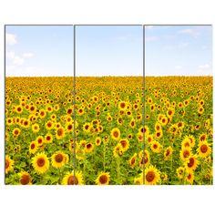 DesignArt 'Beautiful Sunflowers Garden' 3 Piece Photographic Print on Wrapped Canvas Set