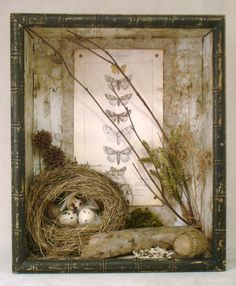 Wonderful Mixed Media Elements of Nature Nest Assemblage in Wooden Box