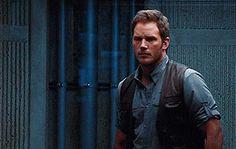 Chris Pratt as Owen Grady Jurassic World Jurassic Movies, Jurassic Park Film, Jurassic Park World, Jurassic World Chris Pratt, Dinosaur Movie, World Movies, Names Of Artists, Movies Showing, Movie Tv
