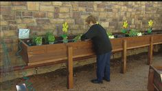 Horticulture therapy growing in memory care centers | wfaa.com Dallas - Fort Worth