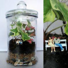 Espacios reservados para dos  #terrario #terrarium #miniature #glass #hiedra #plantas #plants #loveplants #pequeñosmundos #botella #bottle #minimundos #pequeñoshabitantes #homedecor #craft #verde #nature #naturelovers #love #lovers #together #sanvalentin #regalosoriginales #minigarden #minijardin