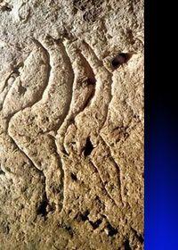 16.2 Grupo pirenaico-Aquitano Les Combarelles (F), Dordogne. Magdaleniano, età: 14.000/12.000 anni. #venus #combarelles