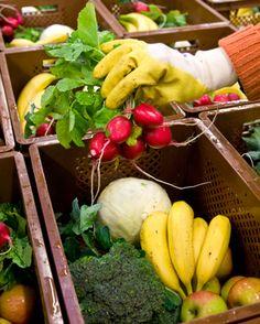 本当は危険な有機野菜|食の安全|現代ビジネス  値段は少し高いけど、おそらく体にいいんだろう—そう思い込んで有機野菜に手を伸ばすあなた。有機野菜のなかには安全とは言えないものもあるんです。 Toxic Foods, Carrots, Health Fitness, Vegetables, Fruit, Carrot, Vegetable Recipes, Fitness, Veggies