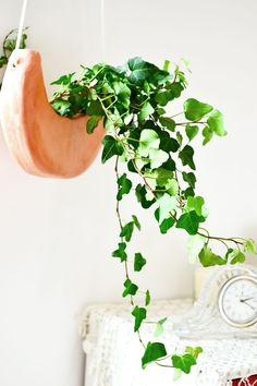 In need of a new planter why not use your air-dry clay to make a terracotta crescent moon hanging planter following some easy steps