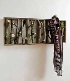 Cut tree limbs in a frame, a great way to display items.