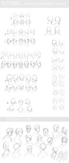 ♥MITSSU'S ART HERE♥ Las gamusinadas de Mitssuki — artist-refs: TUTO - face and perspective by...