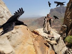 Free Bible images: Free Bible pictures of the story of Elijah fed by ravens at Brook Kerith (also spelt Cherith). (I Kings 17:1-9)