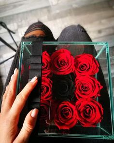 Items similar to 9 Rosarium RoseBox - Live Forver Roses on Etsy Beautiful Red Roses, Glass Boxes, Sunlight, Different Colors, Elegant, Simple, Natural, Water, Flowers