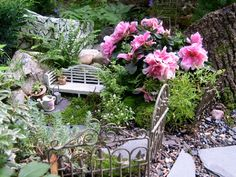 Wee little fairy garden.