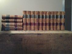 New Americanized Encyclopaedia Britannica 1899