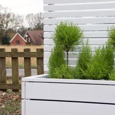 Sichtschutz mit Pflanzkasten aus Holz, Deckend Geölt Weiß