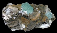 ***Aquamarine crystals on huge Muscovite books!  Love the look of the muscovite.  From Governador Valadare, Doce Valley, Minas Gerais, Brazil.  From the Kevin Ward Mineral Collection at the 2011 Denver show.