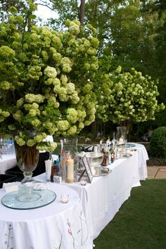 How to throw a chic southern soiree - click for more.