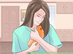 Image titled Make Your Guinea Pig Happy Without a Second Guinea Pig Step 3