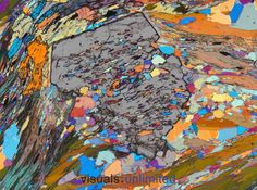 "Muscovite in a hornblende-garnet schist (""Garbenschiefer"") from Passo di Vizze - Pfitscherjoch..The photomicrographs of the ""Alps"" gallery are taken from the historical collection of thin sections of rocks (labelled ""AA"") from the ""Alto Adige"" of Angelo Bianchi and Gianbattista Dal Piaz, who performed their research in the late 1920's and wrote the masterpiece memoirs on the geology and petrography of this region in 1934. A few additional photos are from the author's own collection of thin…"
