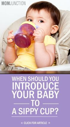 When Should You Introduce Your Baby To A Sippy Cup?: If you are nearing that stage, let us help you with all the ins and outs of using a sippy cup.