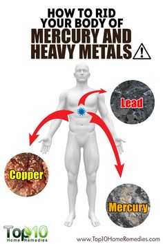 How to Remove Heavy Metals from Your Body