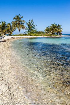 Snorkeling at Laughing Brid Caye National Park, 11 miles off the coast of Belize Beautiful Ocean, Beautiful Beaches, Beautiful World, Belize Vacations, Belize Travel, Dream Vacations, Awesome America, Unbelievable Pictures, Countries In Central America