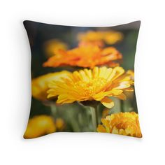 Nature Pillow  -- Made by a DigicolorCreations.com member.  Join us and make your design today.