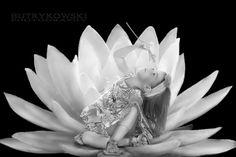 Lily by piotr butrykowski on 500px