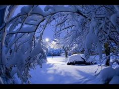 Song for a Winter's Night performed by Sarah McLachlan
