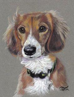 "Pets in Pastel -Custom portraits by J Wilson Portraits ""LOVE"""
