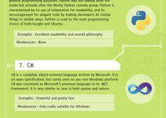 top 10 programming languages infographic