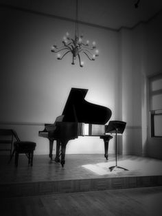 Steinway piano... The Ultimate. This will be my living room someday.
