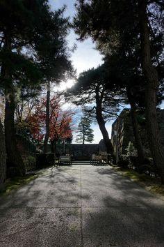 金沢城大手門 真冬の真昼