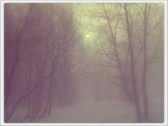 Туман.