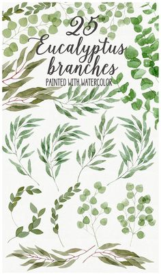 Here is a lovely collection of 25 eucalyptus branches in various shades of green, hand-painted with watercolor.They will be handy for making your own design projects, elegant wedding invitations, greeting cards, beautiful foliage logos, pattern, stationery, scrapbooking elements, wreaths and laurels, posters and wall art.