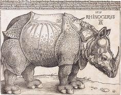 Albrecht Dürer in 1515