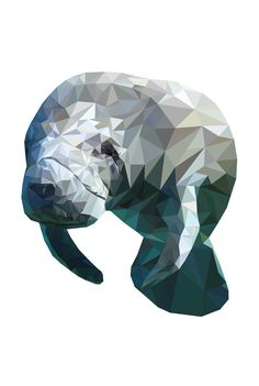 Items similar to Manatee Low-Poly Print on Etsy Low Poly, Sea Cow, Polygon Art, Art Drawings, Drawing Faces, My Spirit Animal, Art Sketchbook, Cool Art, Character Art