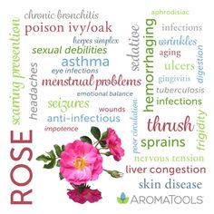 Rose essential oil is steam-distilled from flowers in the Rosaceae family. It can be applied topically, diffused, or inhaled. Its pleasant floral aroma may promote emotional balance. Essential Oils For Pain, Essential Oils Guide, Rose Essential Oil, Natural Essential Oils, Young Living Essential Oils, Essential Oil Blends, Aroma Tools, Essential Oil Menstrual Cramps, Perfume