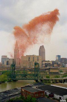Cleveland, Ohio, el 27 de septiembre de 1986 quisieron celebrar el festival del globo, y para ello buscaron romper un record Guinness, liberando la friolera de 1.5 millones de globos