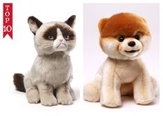 """Grumpy Cat And Boo 9"""" World's Cutest Dog Cute Company Of 2 Gund NWT #GUNDRETIRED #AllOccasion"""